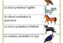 Photo of Les symboles de quelques animaux