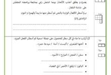 صورة تقييم السداسي الثاني قواعد اللغة السنة الرابعة