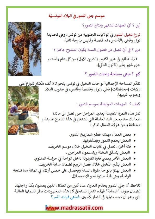 موسم جني الت مور في البلاد التونسي ة فوائد الت مور موقع مدرستي