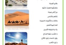 صورة قصيدة بلادي – للشاعر محي الدين خريف – قصيدة في حب الوطن