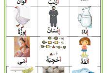 Photo of كلمات تحتوي على حرف الألف