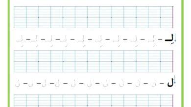 Photo of المراجعة اليومية للحروف ( ملف رقم 29 ) : حرف اللام – تمارين خط