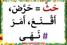 Photo of أحبُّ لغتي العربية : مرادفات و أضداد ( ملف رقم 4 )