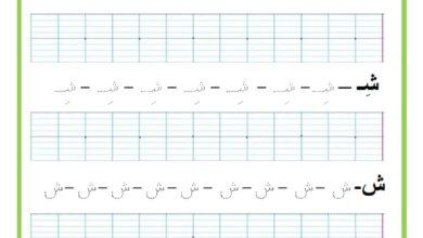 Photo of المراجعة اليومية للحروف ( ملف رقم 21) : حرف الشين – تمارين خط