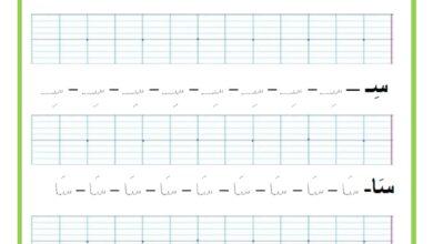 Photo of المراجعة اليومية للحروف ( ملف رقم 19) : حرف السين – تمارين خط