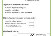 صورة Exercices –  Français – 3 éme année – 1 er Semestre