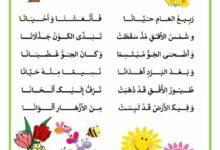 Photo of أنشودة – قصيدة حول فصل الربيع : ربيع العام حيّانا للشاعر جلال الدين النّقّاش