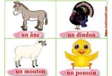صورة les animaux de la ferme – des cartes