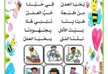 Photo of التربية الموسيقية : أنشودة غنّوا معي