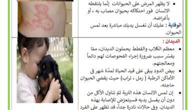 Photo of أمراض الحيوانات الأليفة التي تصيب الانسان –  مخاطر الحيوانات الأليفة