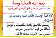 Photo of معلقات : نعم الله المحسوسة