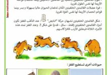 Photo of التنقل عند الحيوانات : لماذا يستطيع الأرنب القفز ؟
