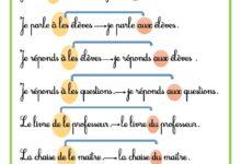 Photo of Les déterminants : au, aux, du et des