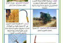 صورة محور المهن : أدوات الفلاح – أدوات المزارع – أدوات البستاني