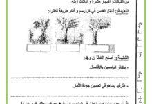 Photo of اختبار الثلاثي الثالث – الايقاظ العلمي – السنة الرابعة