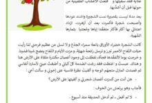 Photo of انتاج كتابي عيد الشجرة