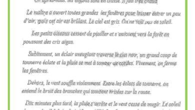 Photo of Examen de lecture compréhension 3 ème trimestre 6 ème année – Texte :un orage