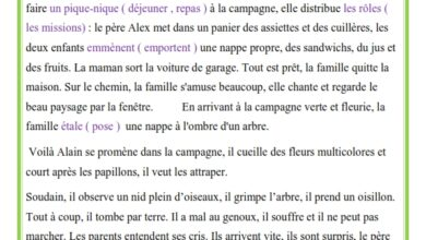 صورة Production écrite le pique-nique et l'accident d'Alain