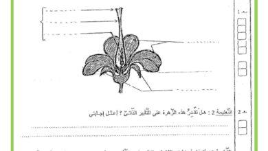 Photo of امتحان الثلاثي الثالث في مادة الايقاظ العلمي السنة السادسة
