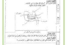 صورة تقييم الثلاثي الثالث في مادة الايقاظ العلمي السنة السادسة