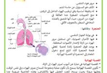 Photo of جهاز التنفس لدى الانسان
