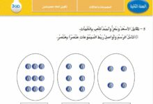 Photo of مدونة القسم في الرياضيات – تمارين لتلاميذ السنة الثانية ابتدائي