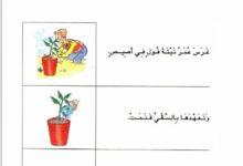 Photo of مدونة القسم في اللغة العربية لتلاميذ السنة الثانية ابتدائي
