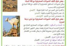 Photo of حيوانات المناطق الصحراوية و أهم مميّزاتها