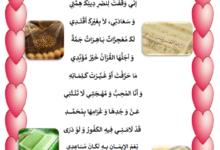 Photo of قصيدة أنشودة يا مصطفى محمد صلى الله عليه و سلم