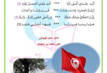 Photo of أنشودة خضراء يا وطني التربية الموسيقية