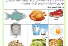 Photo of أغذية الطاقة و النمو و الوقاية