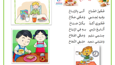 Photo of محفوظات فطور الصباح