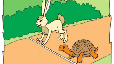 صورة مشاهد السباق بين السلحفاة و الارنب