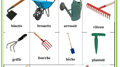 Photo of Des métiers – Le fermier-  Le médecin –  le pompier –   le cuisinier – le tailleur – le menuisier