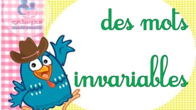 Photo of Des mots invariables – affichage de classe