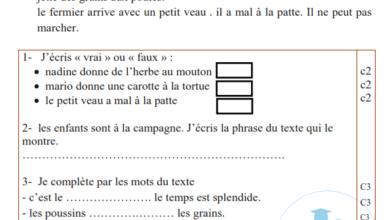 Photo of Evaluation de la lecture compréhension 3 éme année 2 ème trimestre
