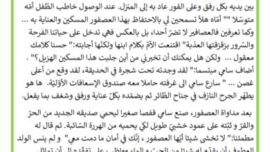Photo of انتاج كتابي – سامي و العصفور الجريح