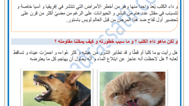 Photo of داء الكلب