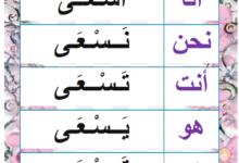 """Photo of صيغة المضارع المرفوع من الفعل الناقص """"سعى"""" – معلقات"""