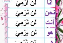 """Photo of صيغة المضارع المنصوب من الفعل الناقص """"رمى"""" – معلقات"""