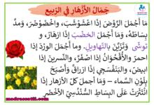 Photo of معلقات وصف الأزهار في الربيع