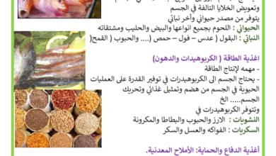 Photo of التغذية السليمة – المجموعات الغذائية – أغذية النمو و الطاقة و الوقاية
