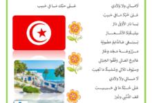 Photo of أنشودة بكتب اسمك يا بلادي