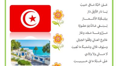 صورة أنشودة بكتب اسمك يا بلادي