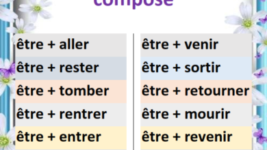 Photo of Les verbes conjugués avec être au passé composé