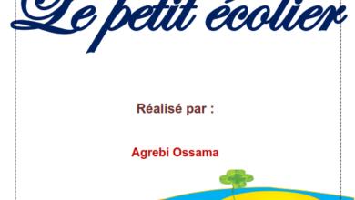 Photo of تلخيص الفرنسية استعدادا للمناظرة للسنة السادسة ابتدائي