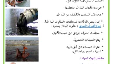 صورة تلوث البيئة البحرية : المصادر ، المخاطر و الحلول