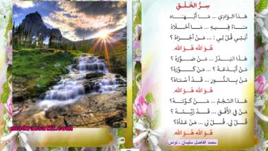 صورة أنشودة سر الخلق – محمد الفاضل سليمان
