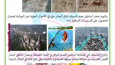 صورة صيد السمك
