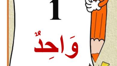 صورة معلقات الاعداد من 1 الى 20 بلسان القلم